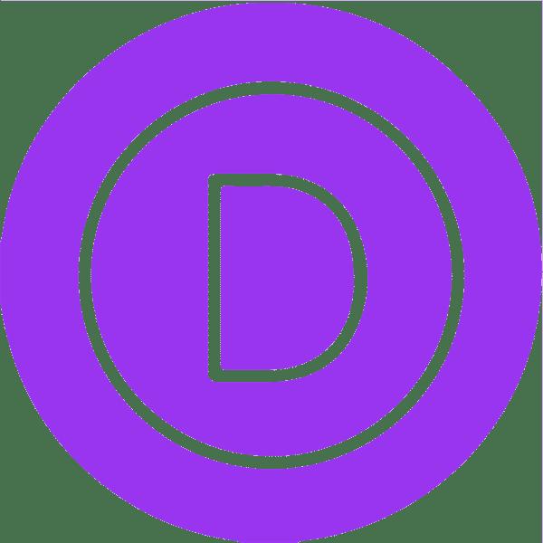 Divi Theme Webentwicklung